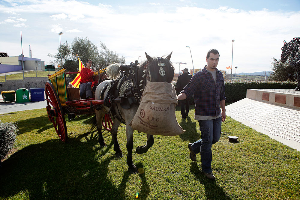 ofrena-al-cavall-sant-antoni-abad--febrer-2013-004