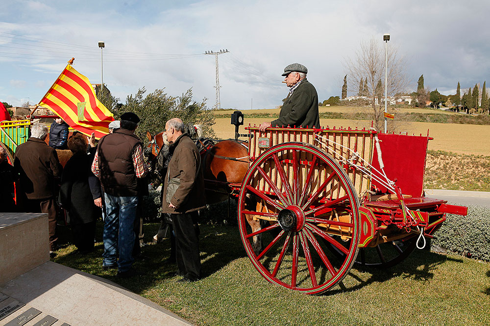 ofrena-al-cavall-sant-antoni-abad--febrer-2013-118