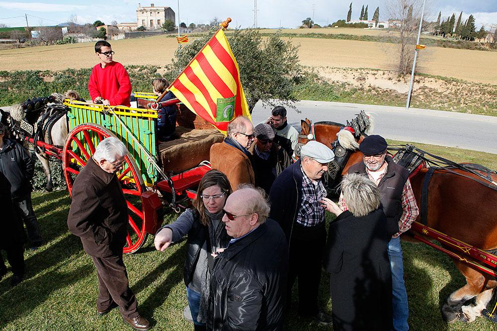 ofrena-al-cavall-sant-antoni-abad--febrer-2013-128
