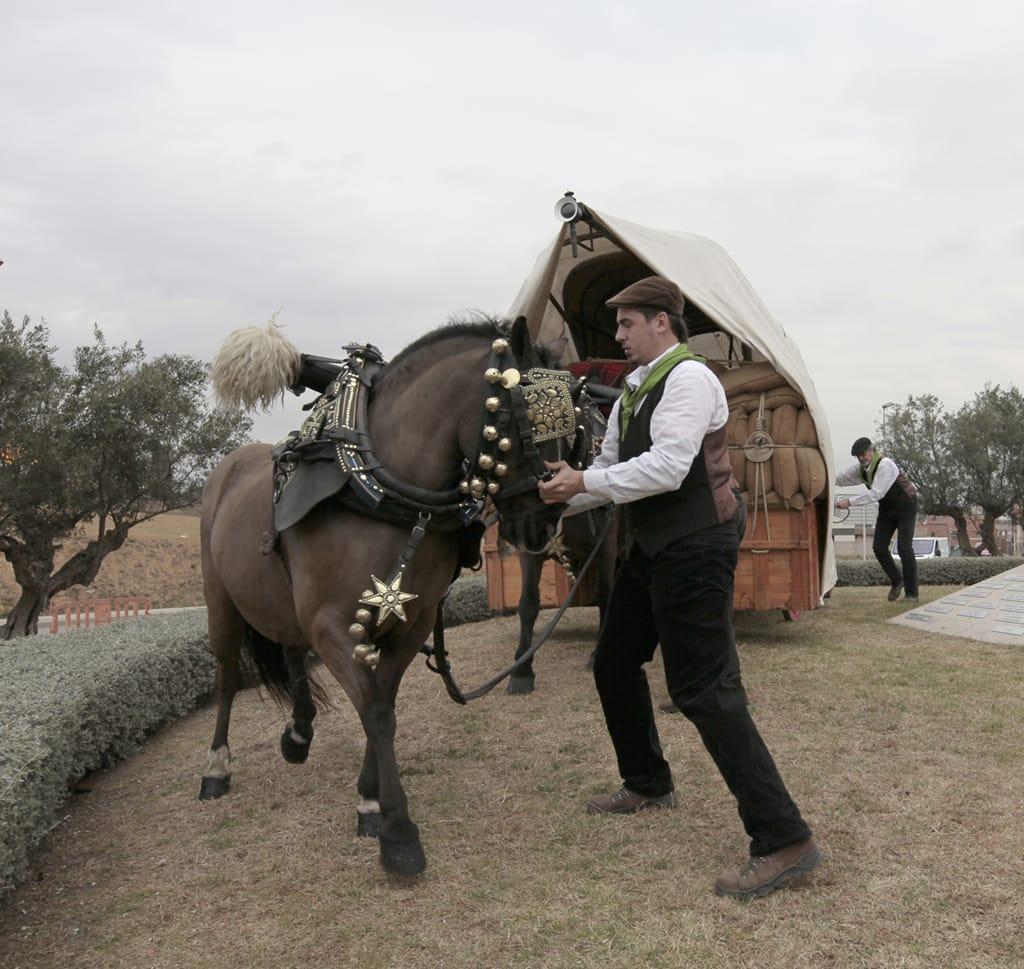 Ofrena al Cavall  Centenari 2016 (165)