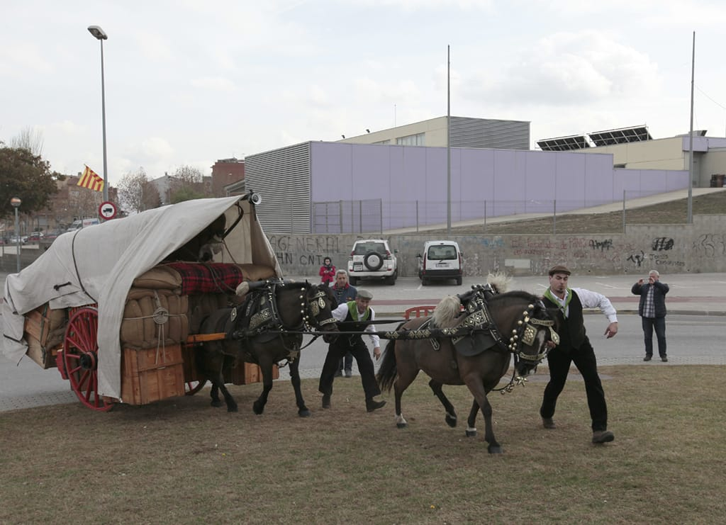 Ofrena al Cavall  Centenari 2016 (19)